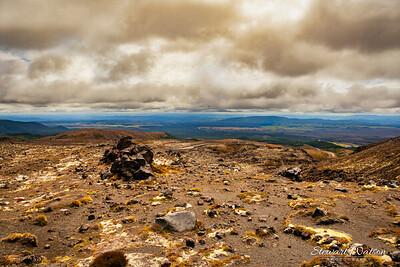 Whakapapa volcanic terrain  in summer
