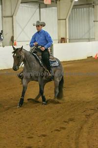 Novice Horse_20180805_0006