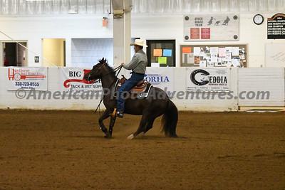 NRHA Novice Horse Open_20180610_0010