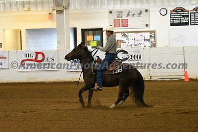NRHA Novice Horse Open_20180610_0012