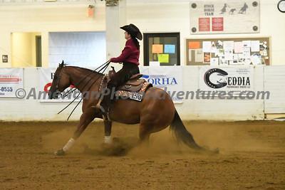 NRHA Novice Horse Open_20180610_0022