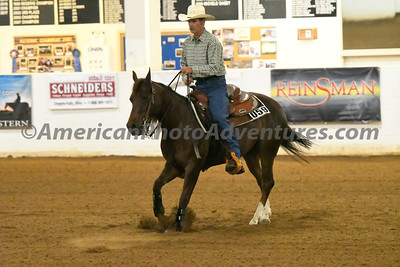 NRHA Novice Horse Open_20180610_0007