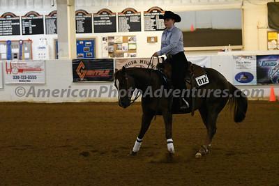 NRHA Novice Horse Open_20180513_0008