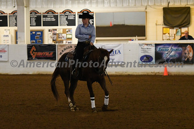 NRHA Novice Horse Open_20180513_0002