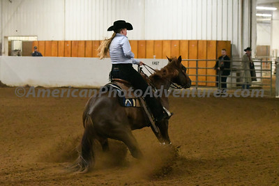 NRHA Novice Horse Open_20180513_0018