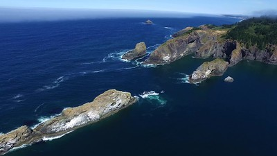 6 Port Orford Headland