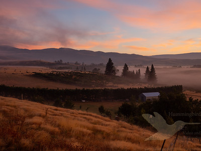 Central Otago 2019