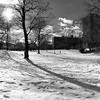 Central Park December II _ bw