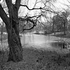 January in Central Park _ bw