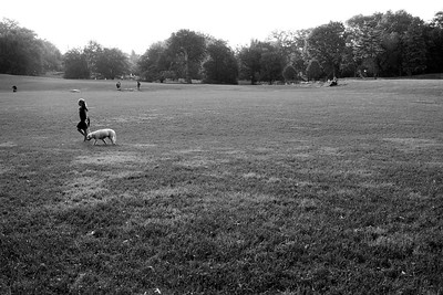 The East Meadow _bw