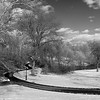 Central Park Walking Path _ bw