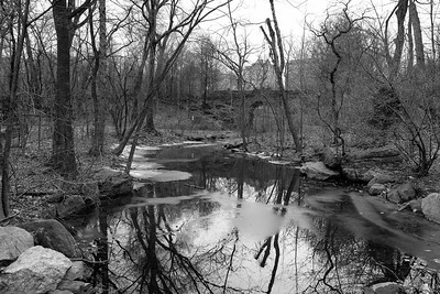 Ravine in January _ bw