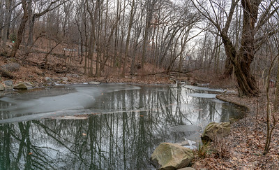 Ravine in January II