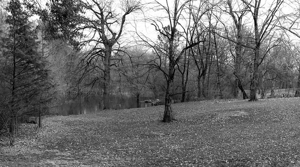 Central Park North _ bw