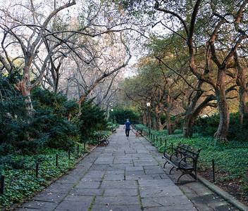 Conservancy Path