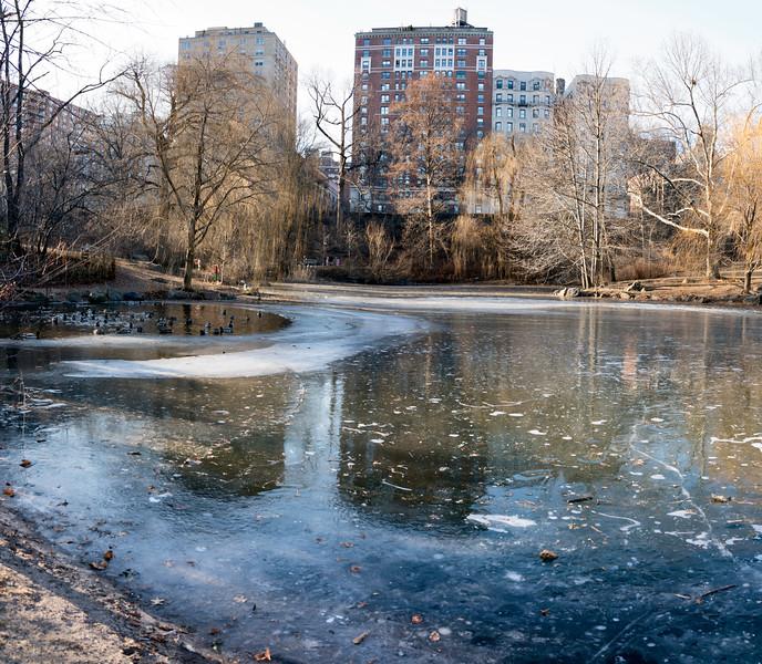 The Pool in Winter VI