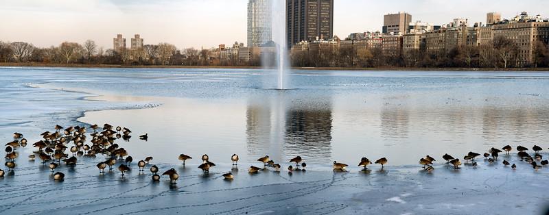 Reservoir in Winter V
