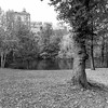 Central Park North XXIII _ bw