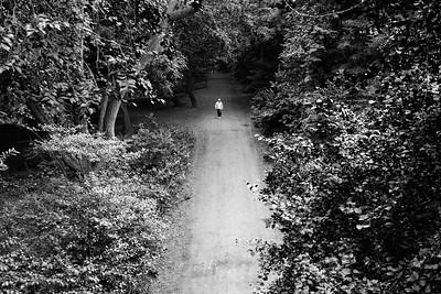 Park Path _ bw