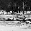 Winter Shadow Landscape