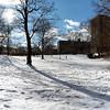 Central Park December II