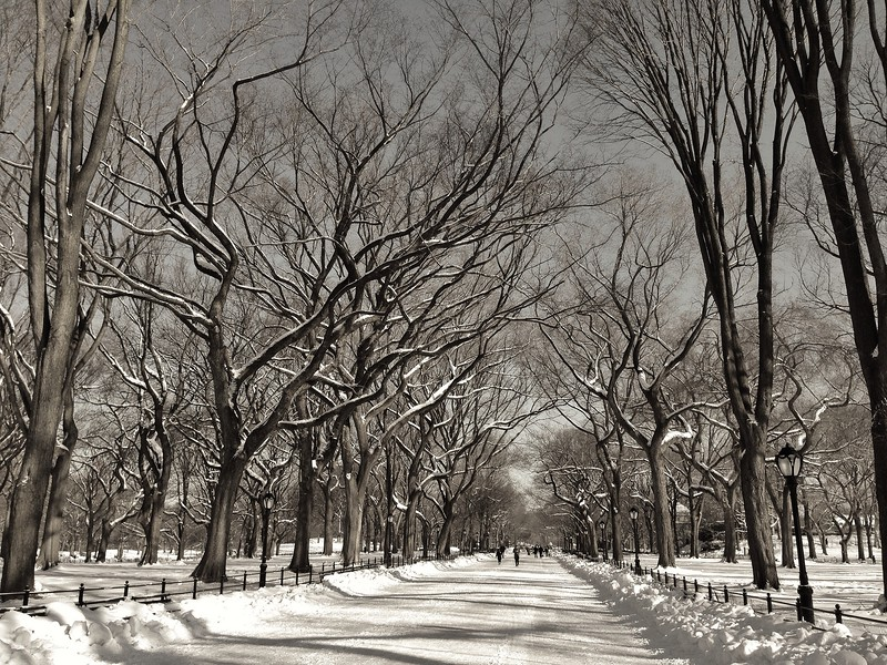 Picturesque Winter - The Mall opposite Bethesda Terrace in Central Park