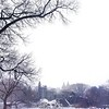 Belvedere Castle in Winter