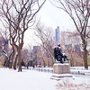 Central Park Blanketed in Snow - Literary Walk and Central Park South