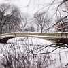 Winter Wonderland - Bow Bridge in focus