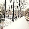 Central Park Blanketed in Snow - Along Central Park West