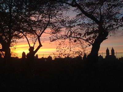 Light Show at the Central Park Reservoir - Running Views