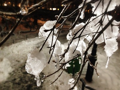 Icicles Off the Branch