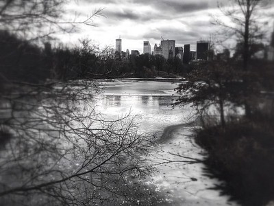 Icy Waters - Central Park