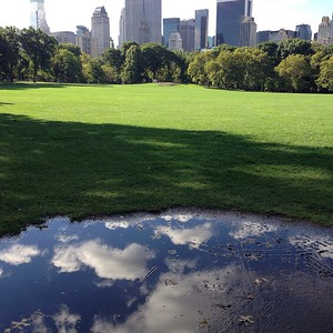 Sheep's Meadow Reflections