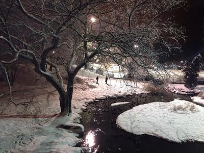 Crisp Winter View from Gapstow Bridge - Color