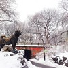Central Park Blanketed in Snow - Balto Standing Guard