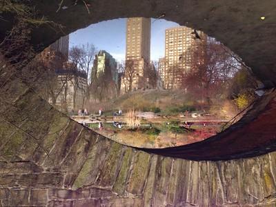 Framed Reflection - The Eye of the Beholder