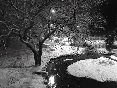 Crisp Winter View from Gapstow Bridge - Black and White