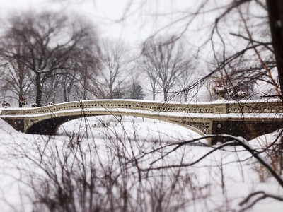Winter Wonderland - Bow Bridge in focus