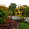 Fall colors - Central Park