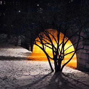 Winter Run Glow