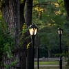 Lampost with sunlight shining through. Central Park