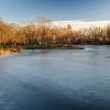 Frozen Turtle Pond. Central Park