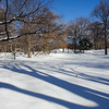 Naturalist's Walk with snow. Central Park, New York