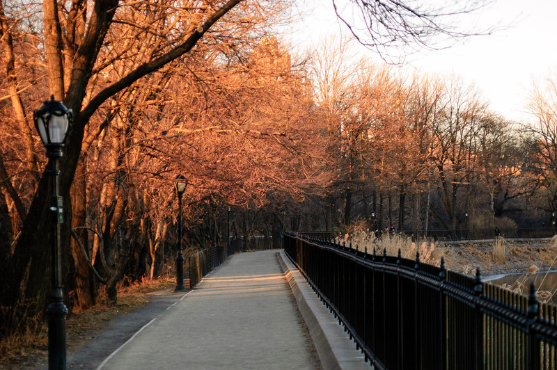 Jacqueline Onassis Reservoir path. Central Park