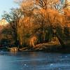 The frozen Lake. Central Park