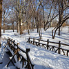 Snow covered bridge spanning inlet to the Lake. Central Park, New York