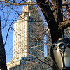 The Stuyvesant building from Central Park
