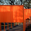 Gates Exibition. Central Park, New York