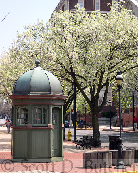 Trolley Master Station in Spring